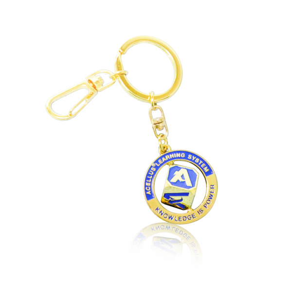 Acellus Cube Keychain