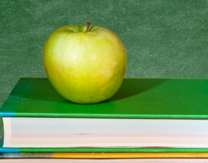 """New """"Instructional Standards in Education"""" Course Targets Teaching Career"""