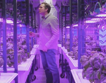 """Scientists Use """"Food Computers"""" to Produce Better Food"""
